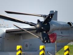 Osprey_pera.jpg